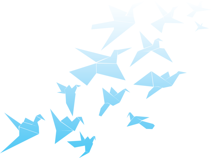 ptaki4